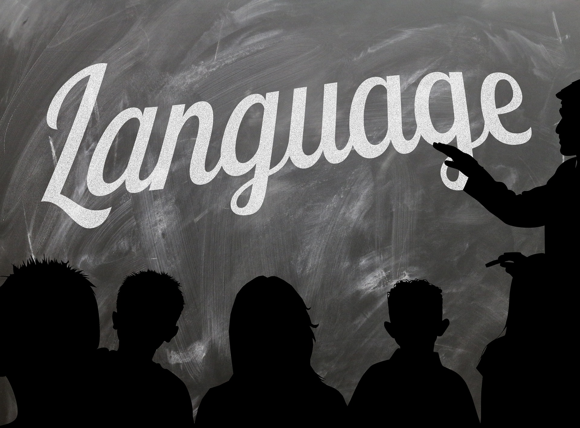 Languages - Image of Students facing a black board and instructor in a Language class